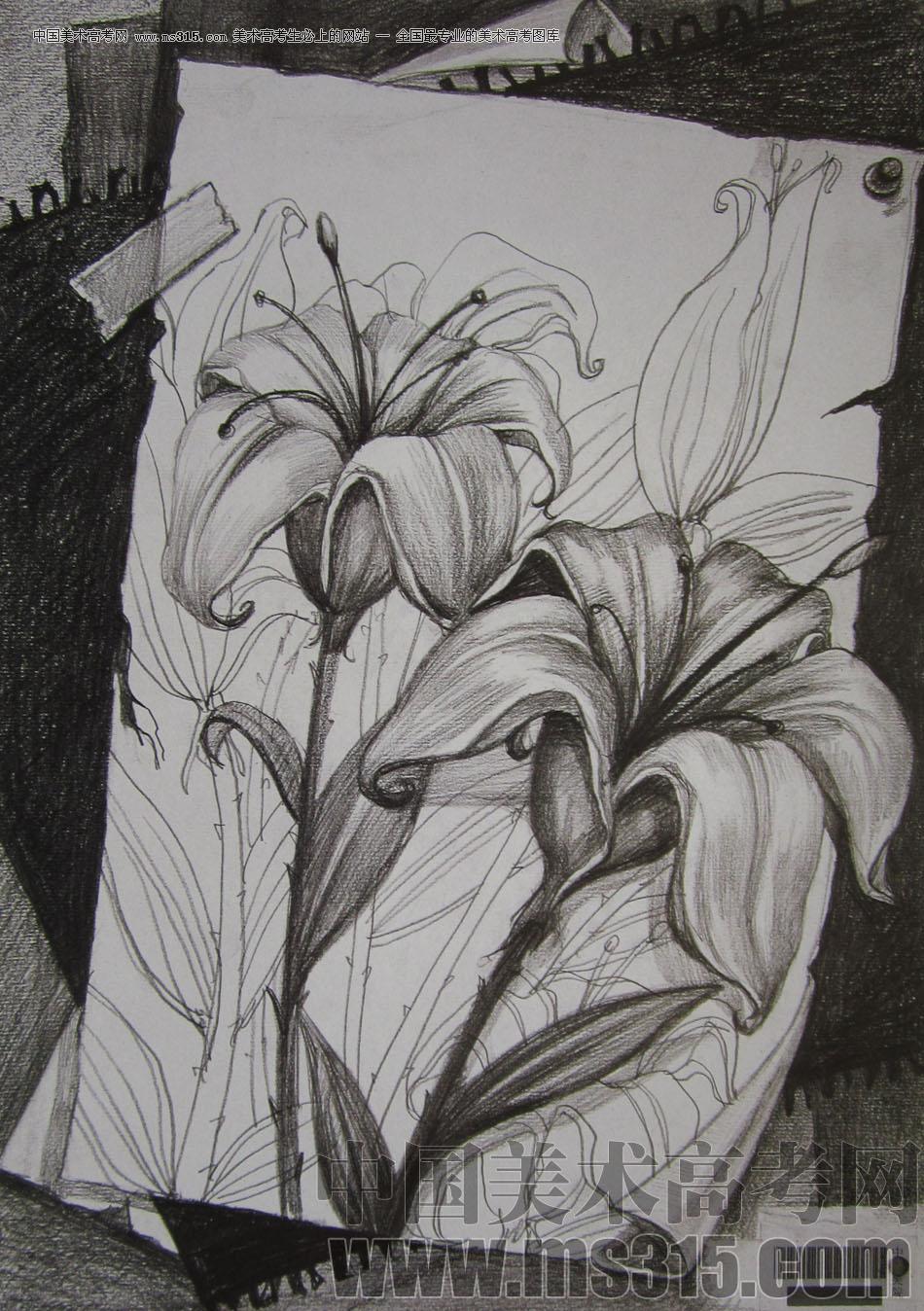 2009年中央美术学院艺术设计专业优秀试卷1(素描)