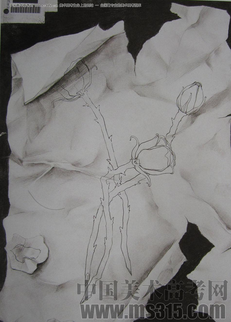 2009年中央美术学院艺术设计专业优秀试卷4(素描)