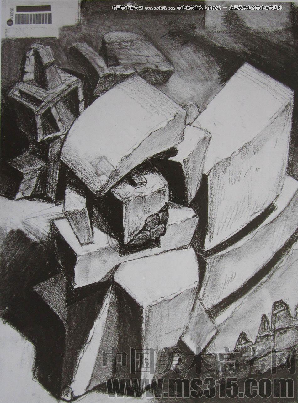 中央美术学院2010年艺术设计优秀试卷6(素描)