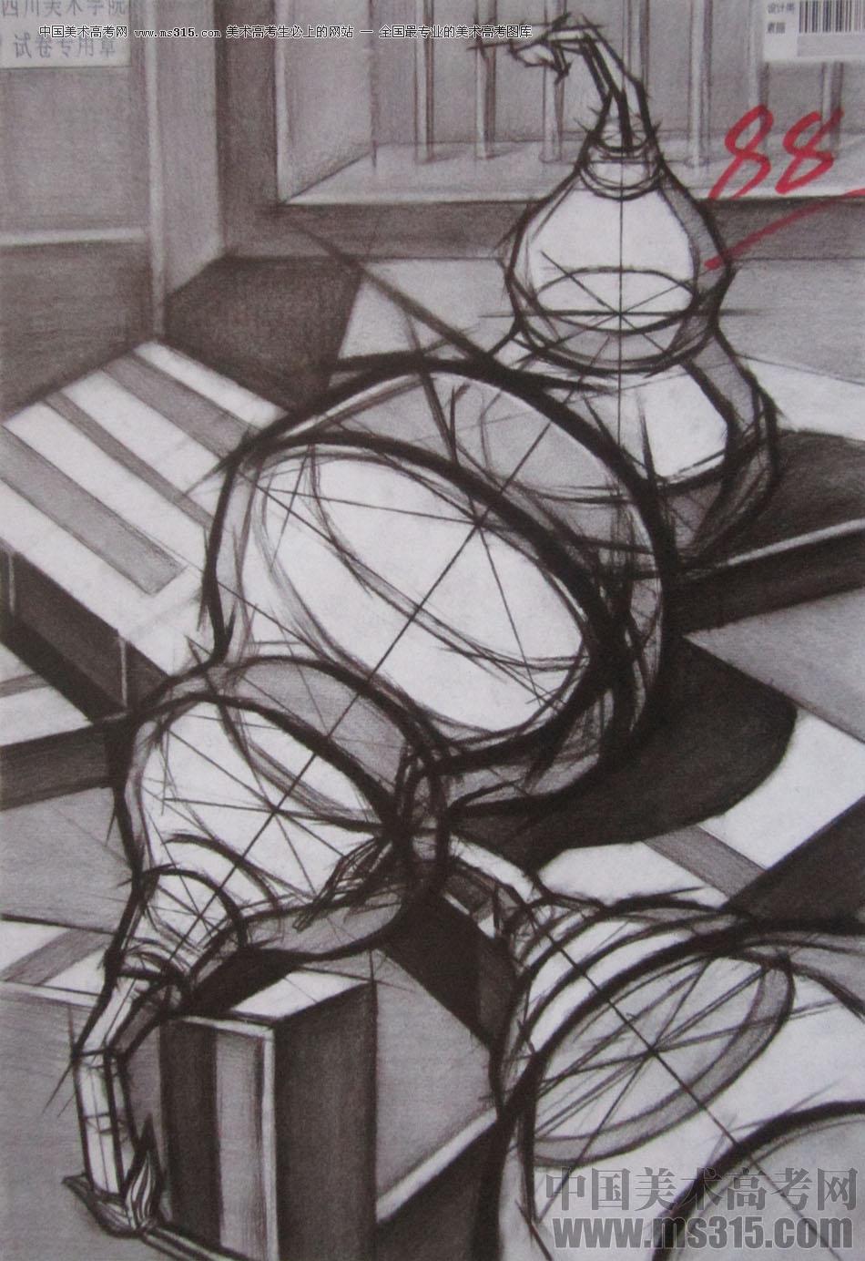 2016年四川美术学院设计素描高分试卷65