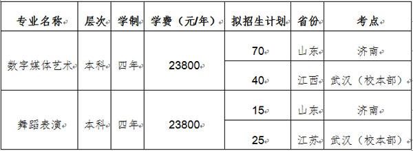 武汉工商学院2019年艺术类专业校考公告